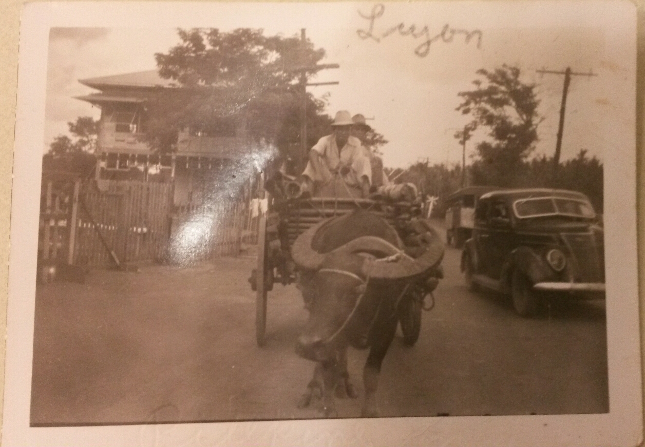 Luzon, Philippines. From the Education Collection at The National WWII Museum.
