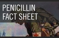 Penicillin Fact Sheet