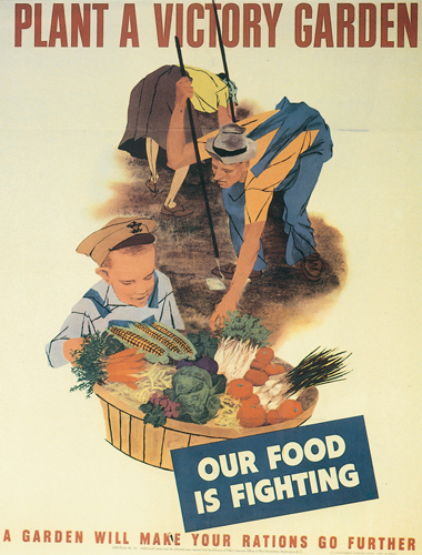 The national wwii museum new orleans learn for students primary sources food propaganda for What was the goal of victory gardens