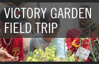Victory Garden Field Trip
