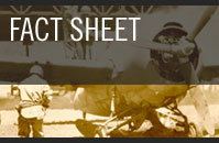 Guadalcanal Fact Sheet
