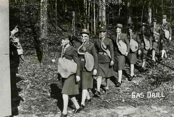 research papers on womens roles during world war two Women served an important role women in world war ii women served 1921 and was trained to parachute by the british army into yugoslavia during world war ii.