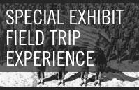 Special Exhibit Field Trip Experience